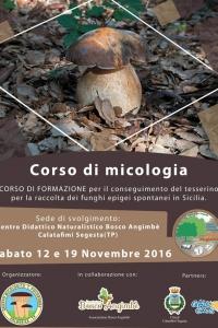 CORSO DI MICOLOGIA 3/2016