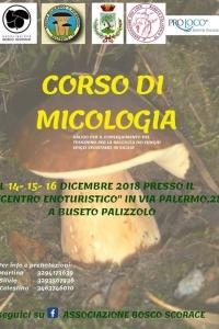 Corso micologico Buseto Palizzolo TP - 14/15/16 Dic 2018
